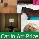Catlin Art Prize