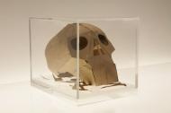 Dead Man's Patterns - Memento Mori Skull