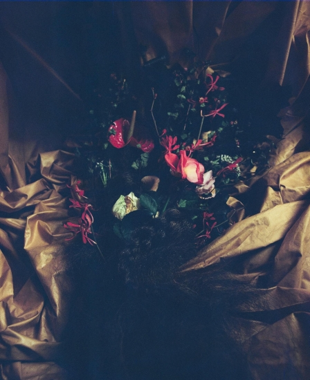 Wyresdale Series IV by Sophia  Schorr-Kon