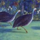 Trevarno Guinea Fowl