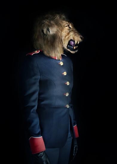 Lion – Portrait Number Seven by Miguel Vallinas Prieto
