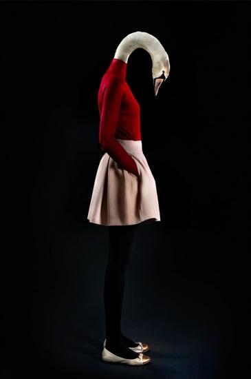 Swan – Portrait Number Twenty Seven by Miguel Vallinas Prieto
