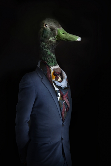 Duck – Portrait Number Eleven by Miguel Vallinas Prieto