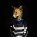 Fox – Portrait Number Nine