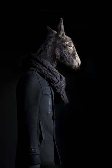 Donkey – Portrait Number Thirty Nine by Miguel Vallinas Prieto