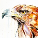 Golden Eagle (Diamond Dust Edition)