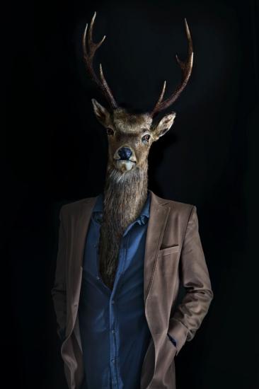 Roe Deer – Portrait Number Three by Miguel Vallinas Prieto