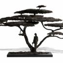 The Acacia Tree