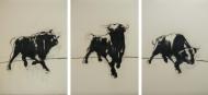 Bulls I-III