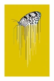 Butterfly - Ochre