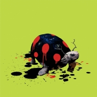 The Tortoise Who Wanted to be a Ladybird