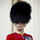 CSM Steve (Treacle) Williams / Company Sergeant Major of The Queens Company, Grenadier Guards.