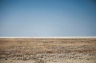 Natures Rothko