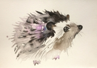 Violet hedgehog