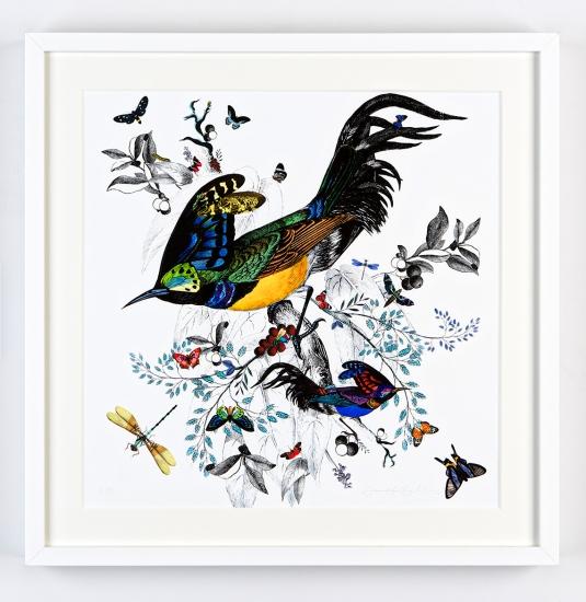 Sma fuglar 02 by kristjana s williams buy affordable art for Buy affordable art online