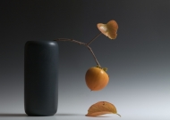 Still Life with Persimmon II