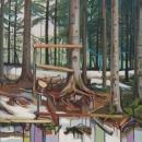 Beneath the Fir Tree Canopy