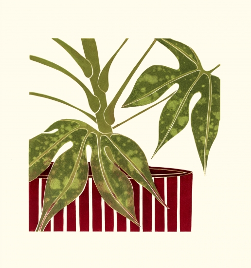Tree ivy fatsia by kerry day buy affordable art online for Buy affordable art online