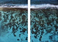 Cades Reef Diptych (large)