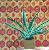 Pot Plant (1)