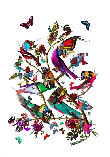 Tolf fuglar (Small) by Kristjana S Williams