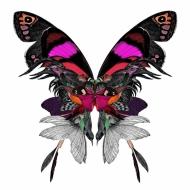 Fuglar og Fidrildin Purple & Pink