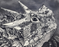 Texas Horned Lizard (Limited Edition Print)