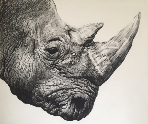 Northern White Rhino by Violet Astor