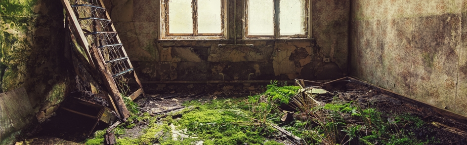 6 Artists Capturing the Allure of the Abandoned