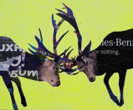 Urban Stags (Mercedes Benz or Nothing)