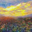 Cacti Sunrise | signed limited edition