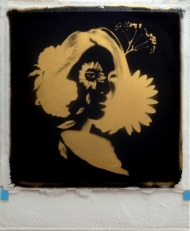 Nightingale  24ct gold leaf Polaroid collage