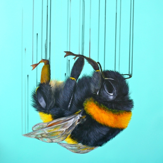 Falling for You by Louise McNaught