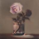A Pink Rose (no.2)