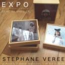 exposition/exhibition - stéphane vereecken - la Rotonde à Bruxelles
