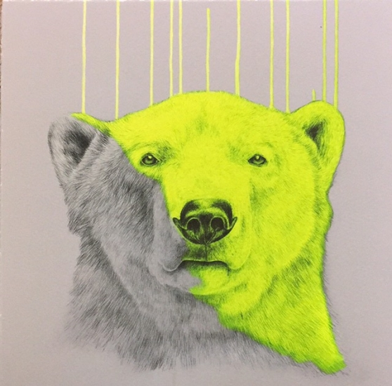 Chilled by Louise McNaught