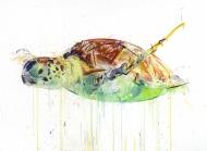 Sea Turtle Diamond Dust Edition