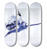 Apex Skate Deck Triptych