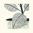 Verde Leaves III