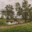 Willows over the Water