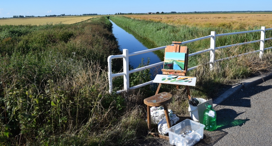 Fred Ingrams   Visions of the Fens