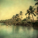 BACKWATERS CATCH