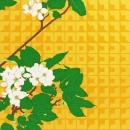Apple Blossom Graphic Impression 2