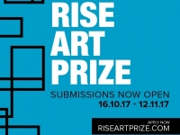 Five Star Rise Art Prize Judges
