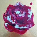 Cadmium Rose
