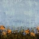 Marigold Field