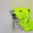 Hey There, Polar Bear - Set of 4 Colours ways - Printers Proof Edition