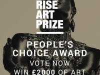 Rise Art Prize People's Choice Launches with Host Oliver Proudlock
