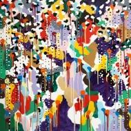 Kaleidoscopic Distortion