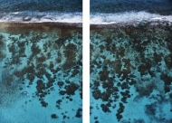Cades Reef Diptych (Mounted on Acrylic)